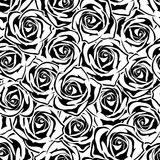 Seamless pattern with black and white roses. Vector illustration. Royalty Free Stock Image