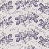 Seamless pattern of blackberry with branch and leaves Royalty Free Stock Image