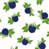 Seamless Pattern of Blackberry Stock Photo
