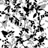 Seamless pattern of Blackthorn berries and birds Royalty Free Stock Image