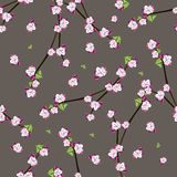Seamless pattern with blooming apple twigs Stock Photos