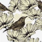 Seamless pattern with blooming flowers and singing. Birds, hand-drawing. Vector illustration Stock Photos