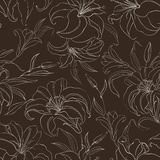 Seamless pattern with blooming lilies. Seamless  pattern with blooming lilies on brown background. Vector illustration Stock Images