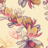Seamless pattern with blooming magnolia flowers, h Stock Photos