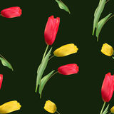 Seamless pattern with blooming red and yellow tulips Royalty Free Stock Photography