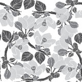 Seamless pattern with blossoming branches of apple tree. Monochr Stock Photo
