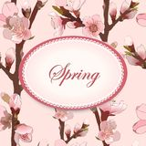 Seamless Pattern With Blossoming Pink Flowers. Royalty Free Stock Images