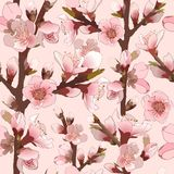 Seamless Pattern With Blossoming Pink Flowers. Royalty Free Stock Photography