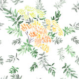Seamless pattern of blossoming spring branch with orange yellow red flowers and green leaves isolated on white Stock Images