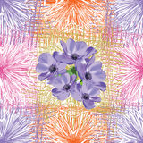 Seamless pattern with blue anemone flowers. On grunge striped and checkered colorful background stock illustration