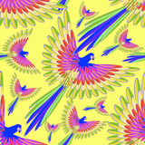 Seamless pattern blue the Caribbean parrot fly vector. Seamless pattern blue the Caribbean parrot fly.vector illustration Stock Image