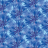 Seamless pattern with blue cornflower Stock Images