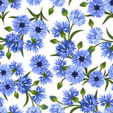 Seamless pattern with blue cornflowers. Vector ill Royalty Free Stock Image