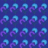 Blue flower cornflower isolated on white background. Cartoon vector centaurea cyanus illustration. Seamless pattern with blue flower cornflower isolated on white Royalty Free Stock Photography