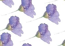 Seamless pattern with blue flowers painted with watercolors royalty free illustration