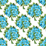 Seamless pattern of blue forget-me-not bouquets Royalty Free Stock Images