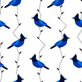 Seamless pattern with blue jay and branches. Ornament for textile and wrapping. Stock Photo