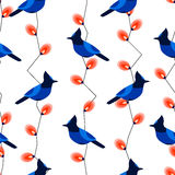 Seamless pattern with blue jay and garland with lights. Ornament for textile and wrapping. Vector Stock Photo