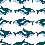 Seamless pattern with a blue killer whale. vector illustration. Royalty Free Stock Images