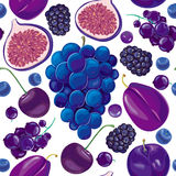 Seamless pattern of blue and lilac fruits. On white background Stock Photos