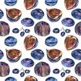Seamless pattern with blue plums, figs and grapes drawn by hand with colored pencil Stock Photos