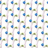 Seamless pattern with blue Poppies and Tulips flowers. Watercolor illustration Royalty Free Stock Photography