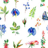 Seamless pattern with blue Sweet pea, Lathyrus odoratus, leaves. Stock Image