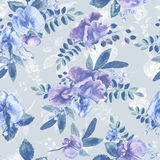 Seamless pattern with blue Sweet pea, Lathyrus odoratus, leaves. Royalty Free Stock Images