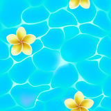 Seamless pattern of blue water in pool and flowers Royalty Free Stock Photos