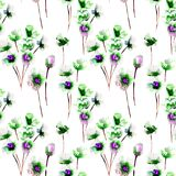 Seamless pattern with Blue wild flowers. Watercolor illustration Stock Image