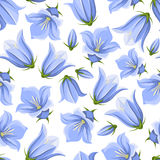 Seamless pattern with bluebell flowers. Vector illustration. Royalty Free Stock Image