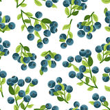 Seamless pattern with blueberries. Royalty Free Stock Photography