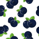 Seamless Pattern of Blueberries Stock Photo