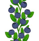 Seamless pattern of blueberries. Ornament leaves and berries of bilberries on a branch. Forest plant huckleberry. Isolated endless. Twig of whortleberry or royalty free illustration