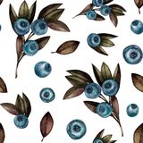Seamless pattern with blueberry stock illustration