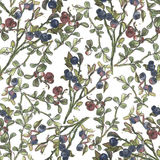 Seamless pattern with blueberry and cowberry. Watercolor hand drawn illustration on white background Royalty Free Stock Photos