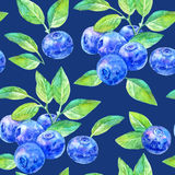 Seamless pattern of a blueberry. Forest berry.Watercolor hand drawn illustration.Dark blue background Stock Image