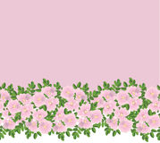 Seamless pattern border with flowers Stock Photo