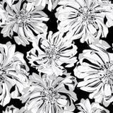 Seamless  pattern of botanical flowers Stock Photo