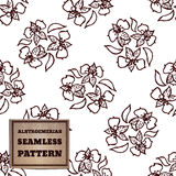 Seamless pattern with bouquet of alstroemerias Royalty Free Stock Image