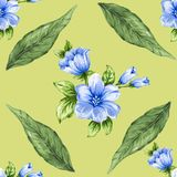 Romantic floral seamless  pattern bouquet rose blue flowers and. Seamless  pattern bouquet rose blue flowers and plant watercolor gouache hand draw Romantic Royalty Free Stock Photography