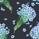 Seamless pattern with the bouquets of blue forget-me-not flowers (Myosotis), painted in a watercolor on a dark background Royalty Free Stock Images