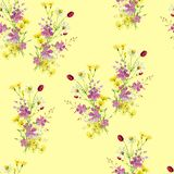Seamless pattern of bouquets of wild flowers. royalty free illustration