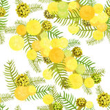 Seamless pattern Branch of mimosa acacia silvery whitened  Vecto Stock Photos