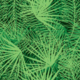 Seamless pattern with branches Stock Photos