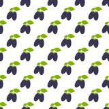 Seamless pattern. Branches with black berries on white background. Blackberry . For your design and decoration of fabric, paper and wallpaper stock illustration