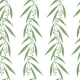 Seamless pattern branches of eucalyptus Royalty Free Stock Image