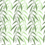 Seamless pattern branches of eucalyptus. Royalty Free Stock Photo