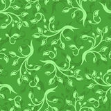 Vector Seamless pattern with branches and leaves. Stock Photography