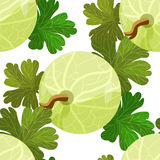 Seamless pattern of branches with leaves gooseberry. vector illu Stock Image